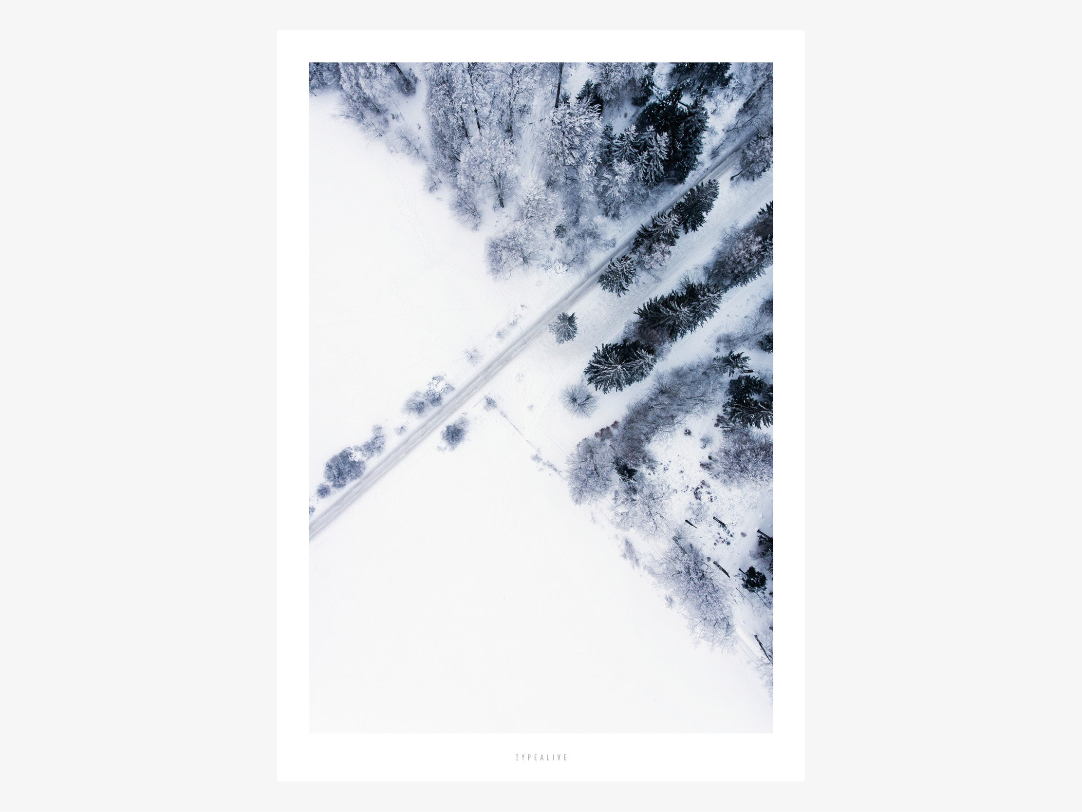 Print / Above The Woods No. 2