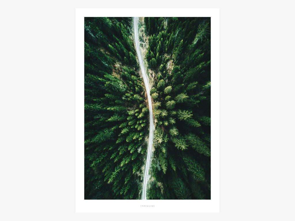 Print / Above The Woods No. 3
