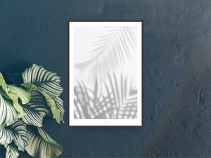 Print / All About Palms No. 1