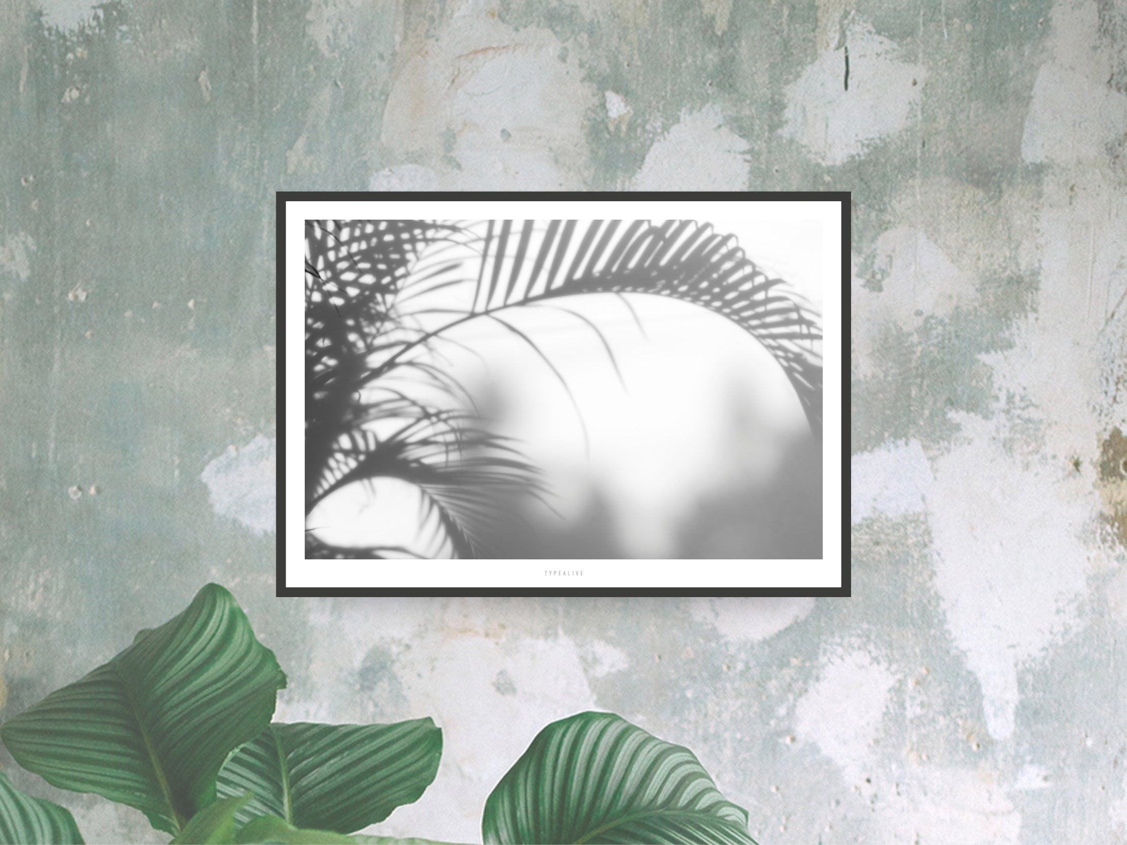 Print / All About Palms No. 3