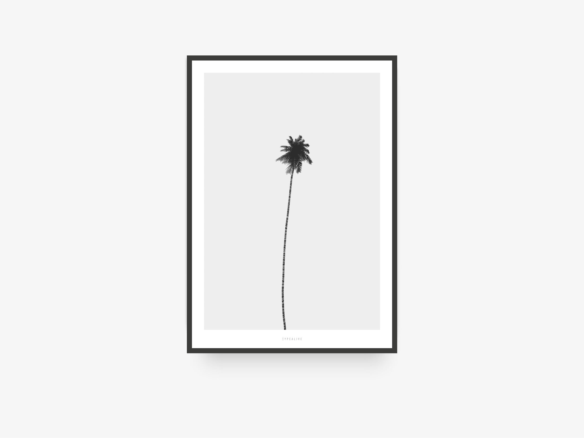 Print / All About Palms No. 4