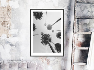 Print / All About Palms No. 7