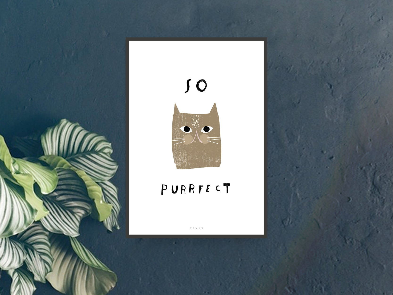 Print / Catisfaction No. 5