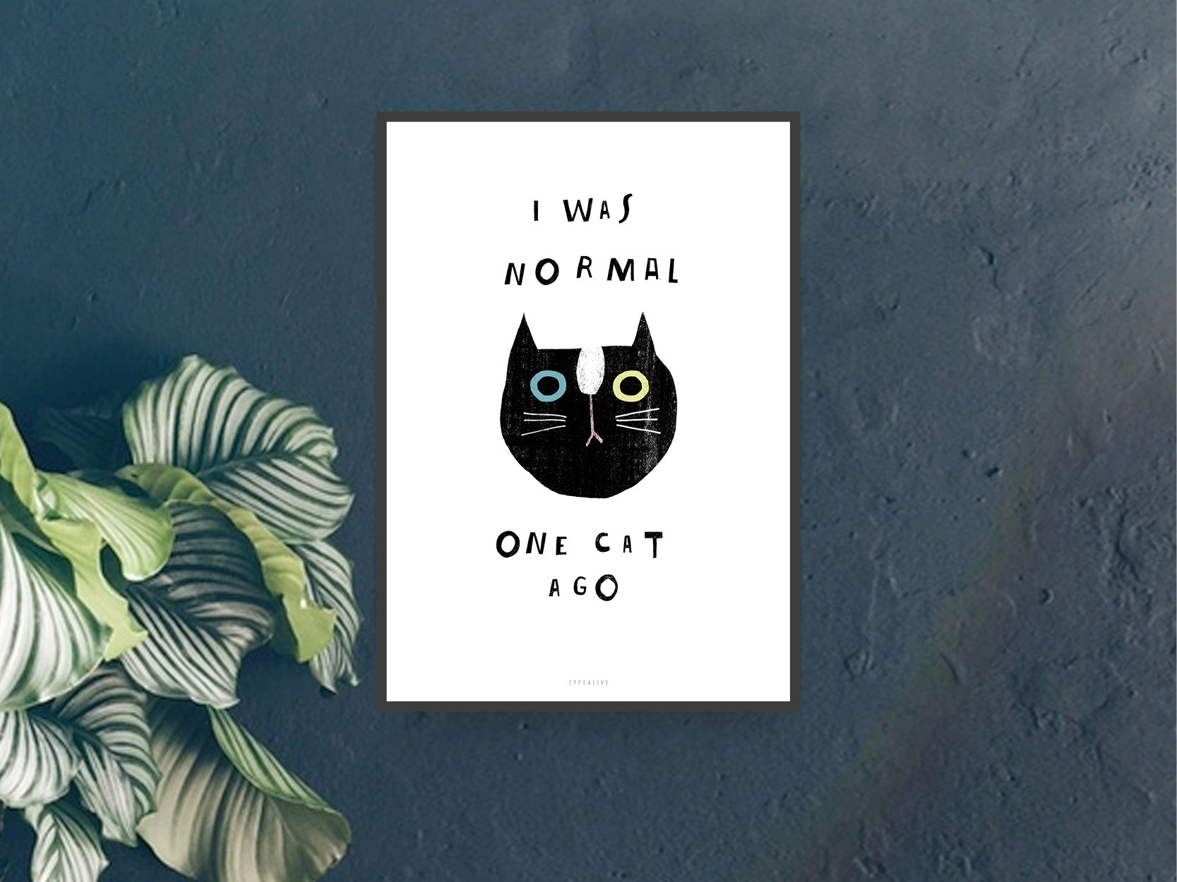 Print / Catisfaction No. 9