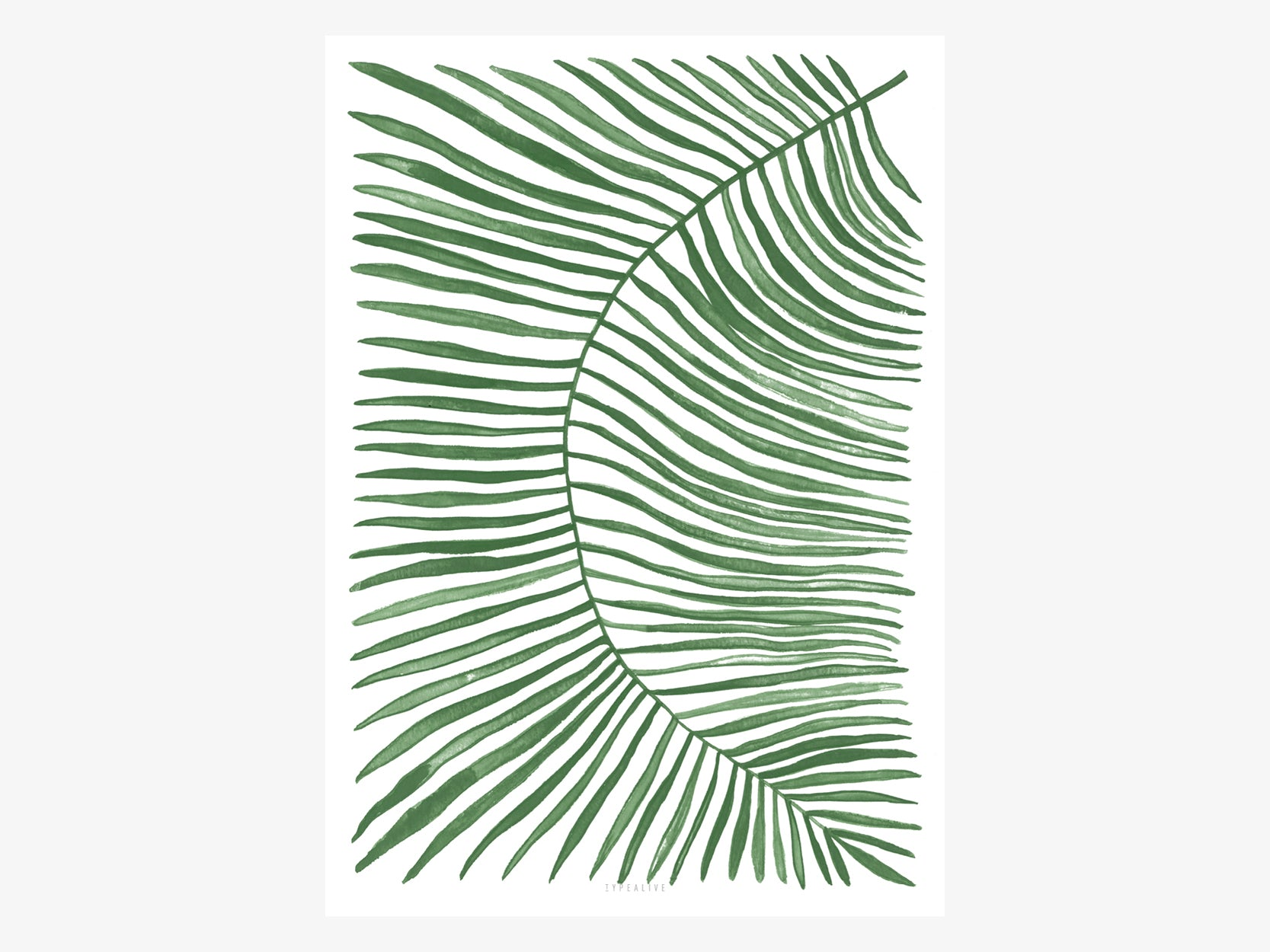 Print / Rectangle Plant No. 1