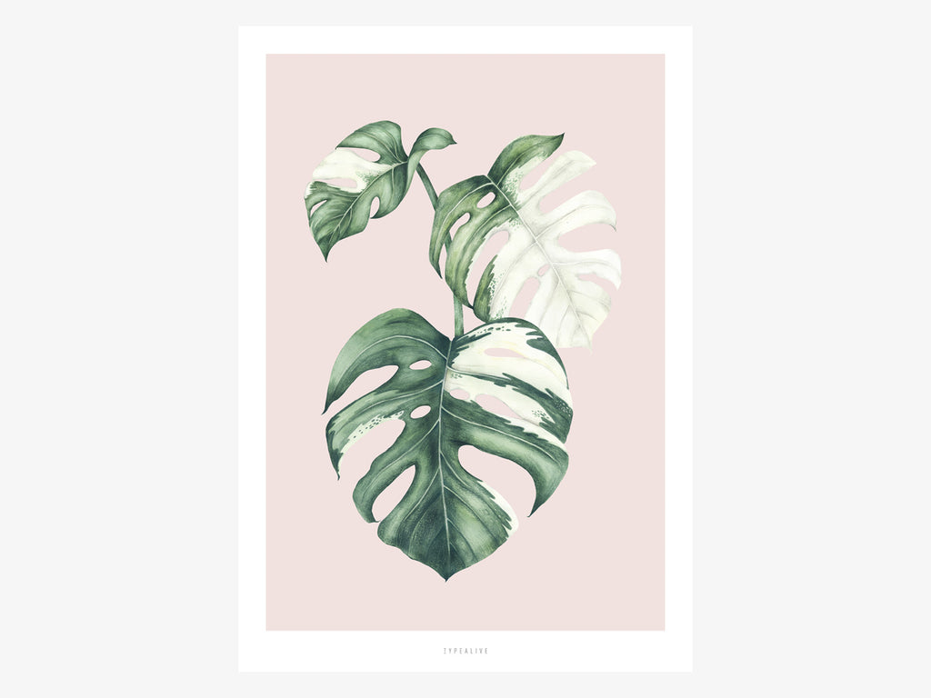Print / Tropical No. 4