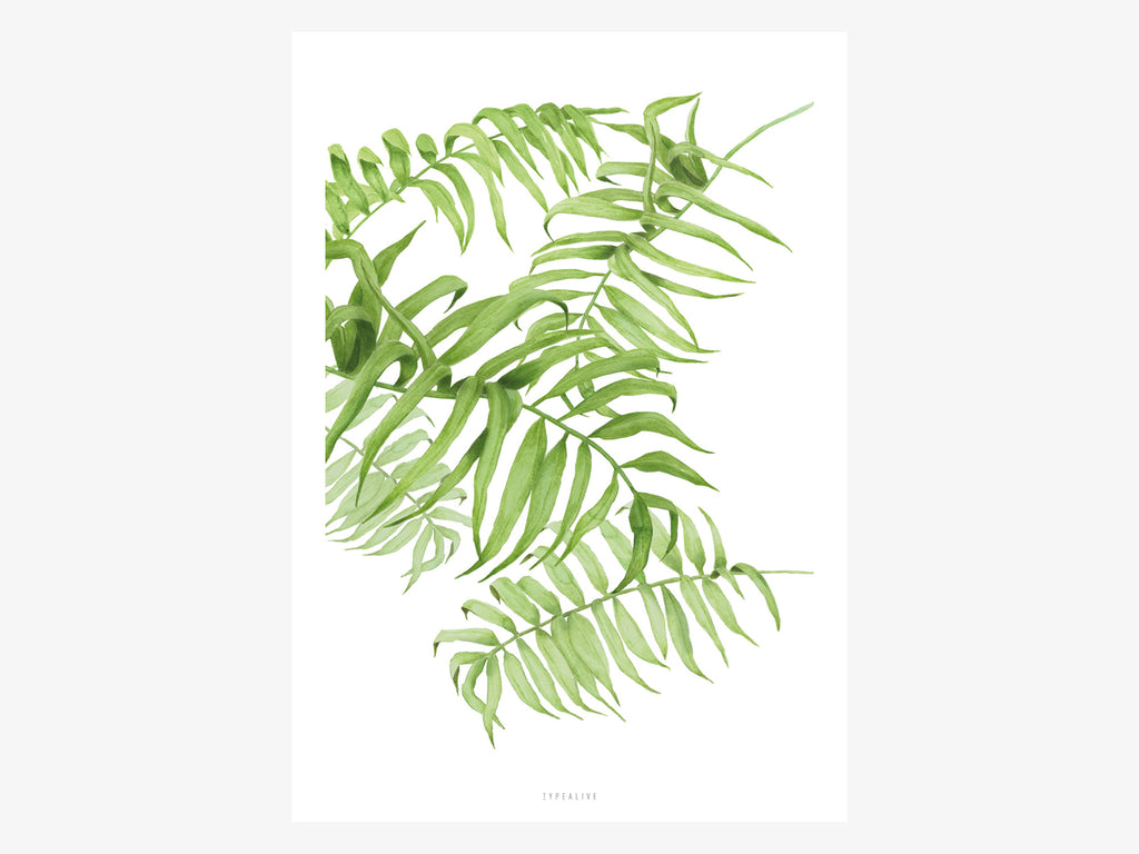 Print / Tropical No. 1