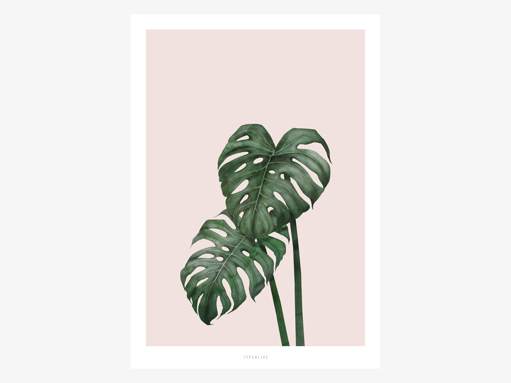 Print / Tropical No. 9