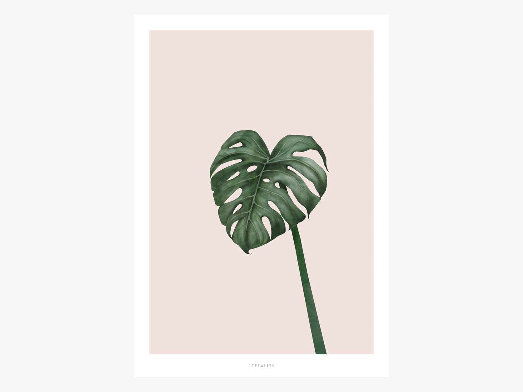 Print / Tropical No. 10