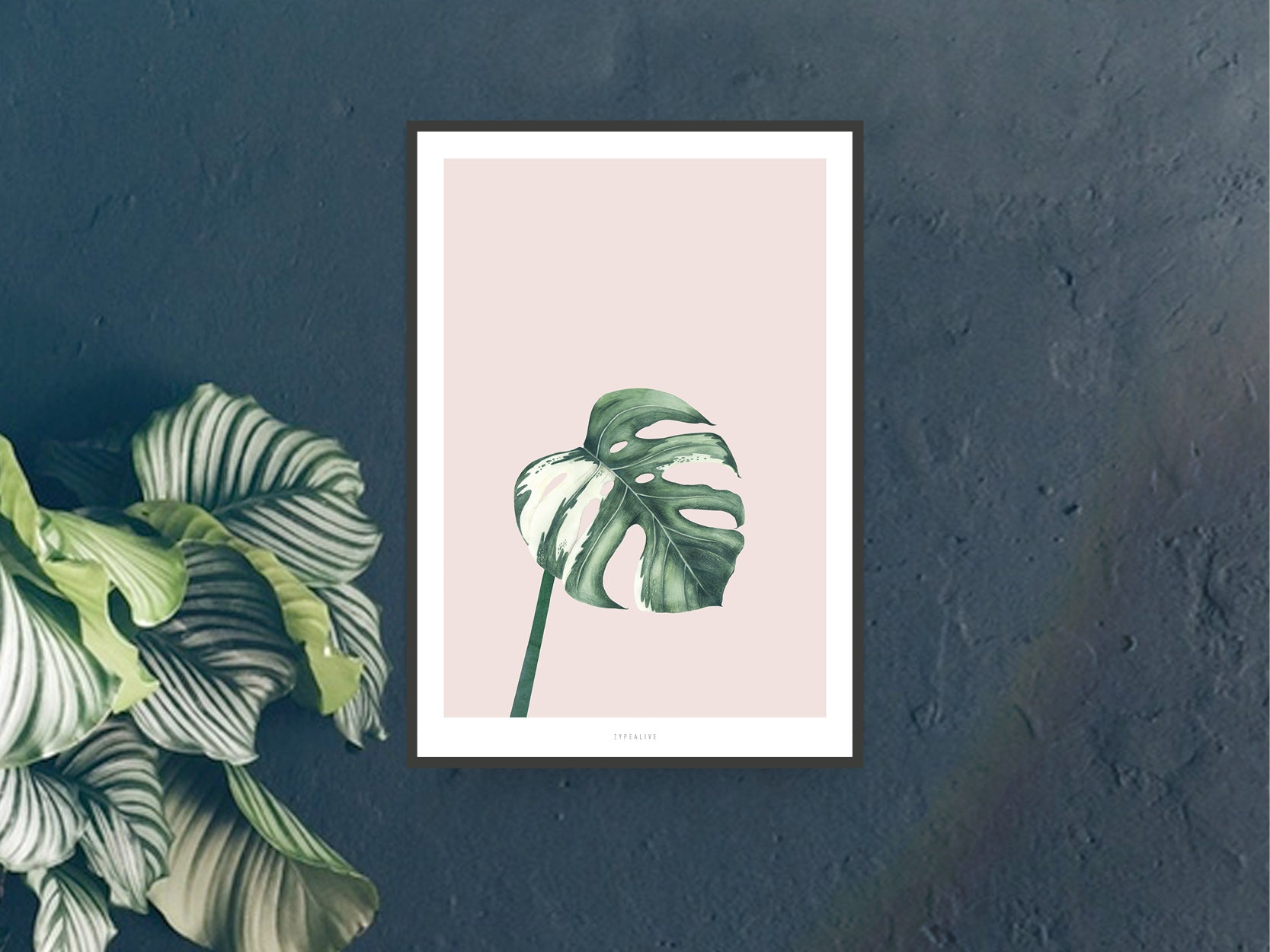 Print / Tropical No. 11