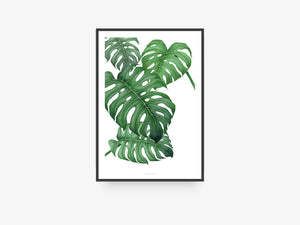 Print / Tropical No. 2