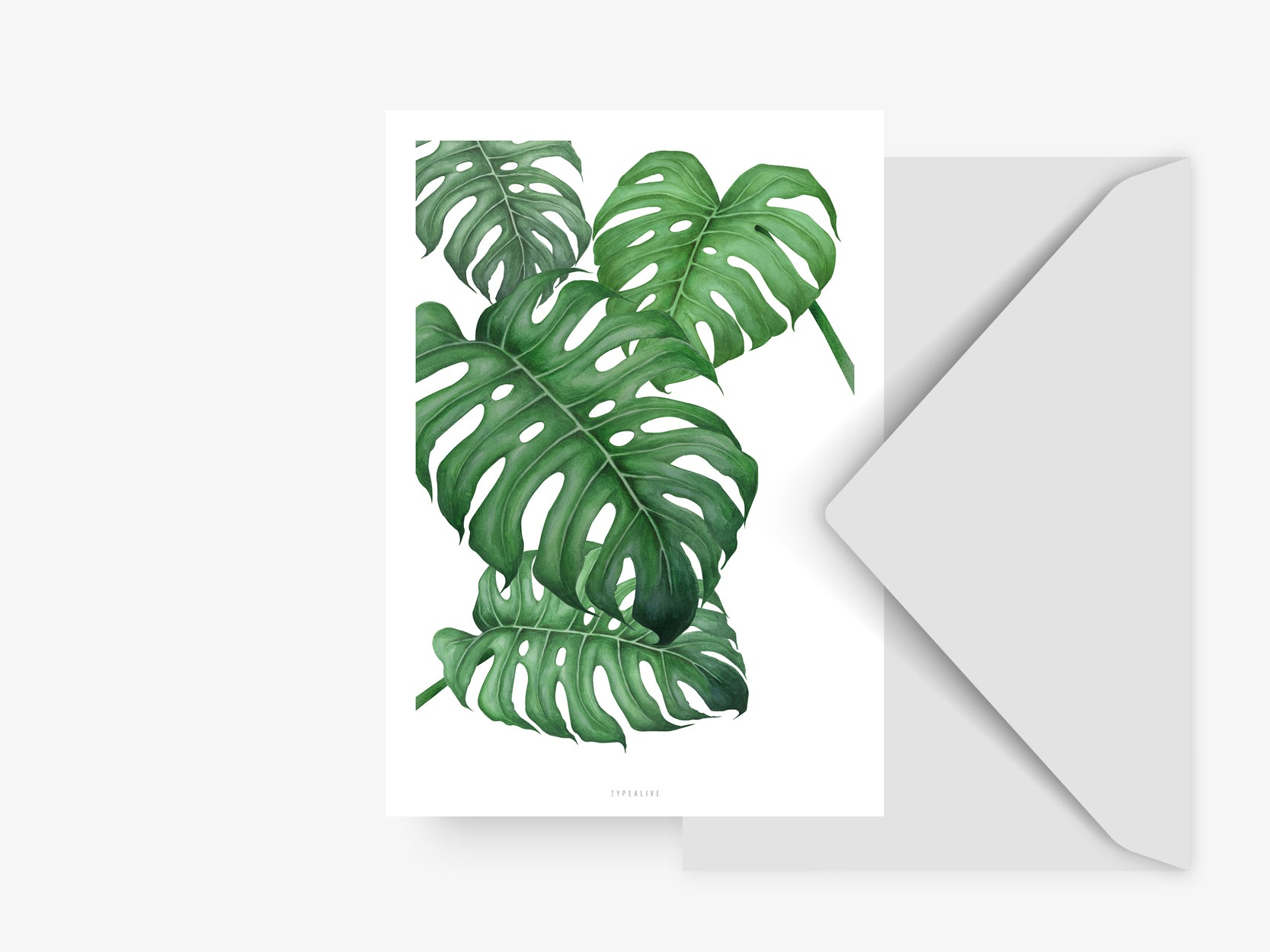Postkarte / Tropical No. 2