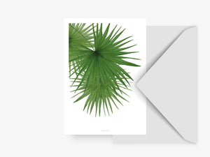 Postkarte / Tropical No. 3