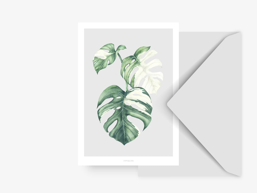 Postkarte / Tropical No. 5