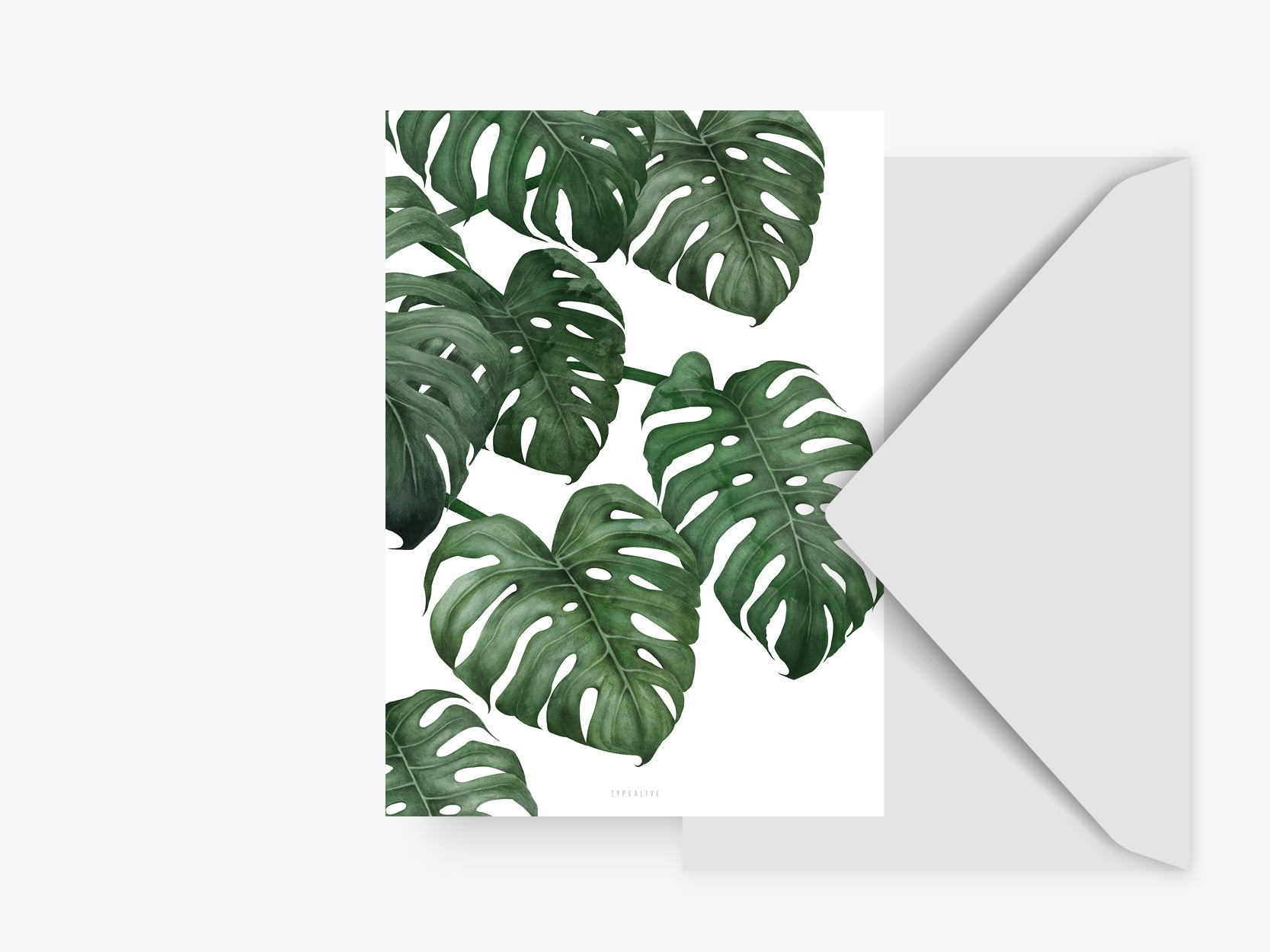Postkarte / Tropical No. 6