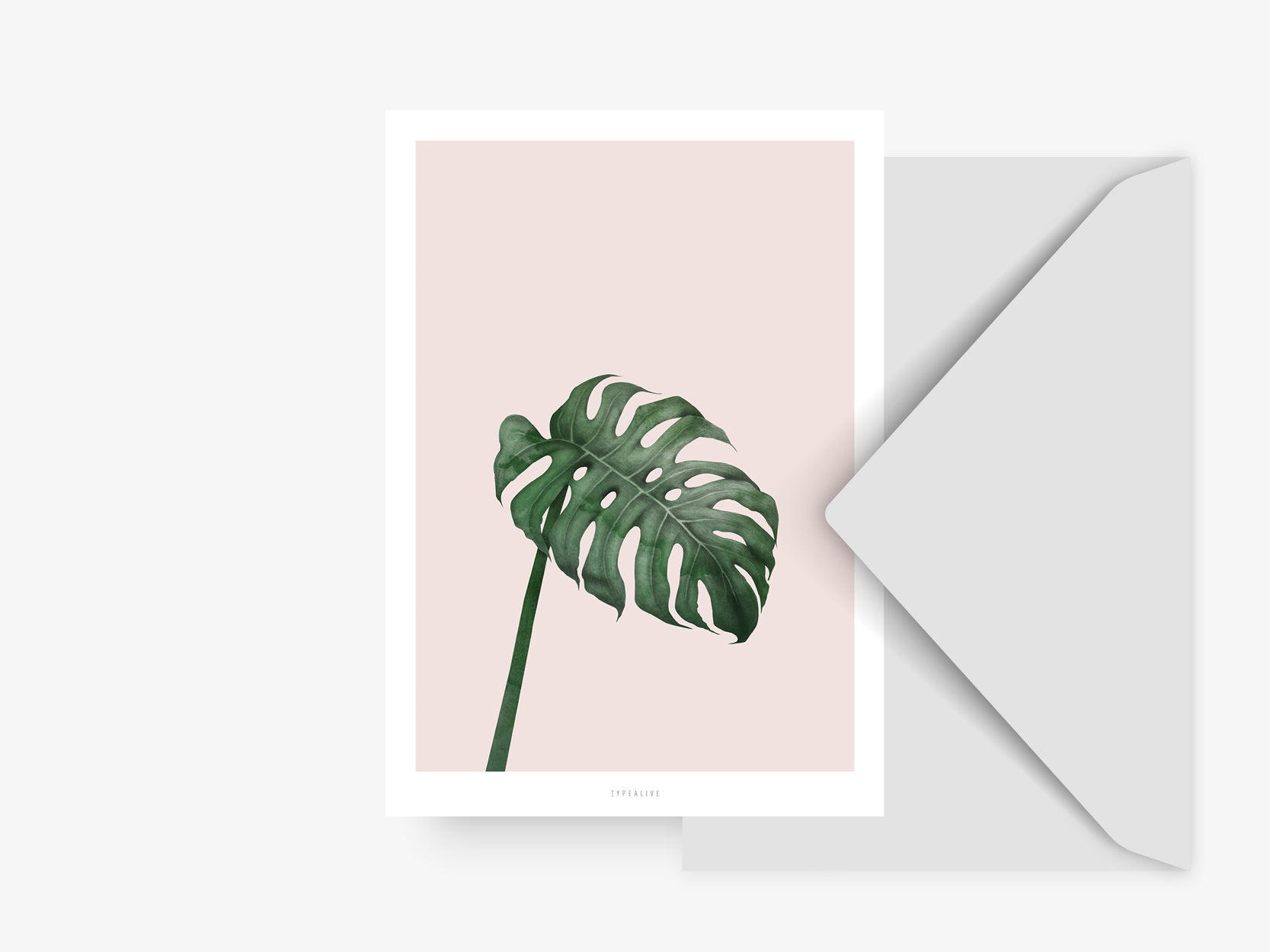 Postkarte / Tropical No. 7
