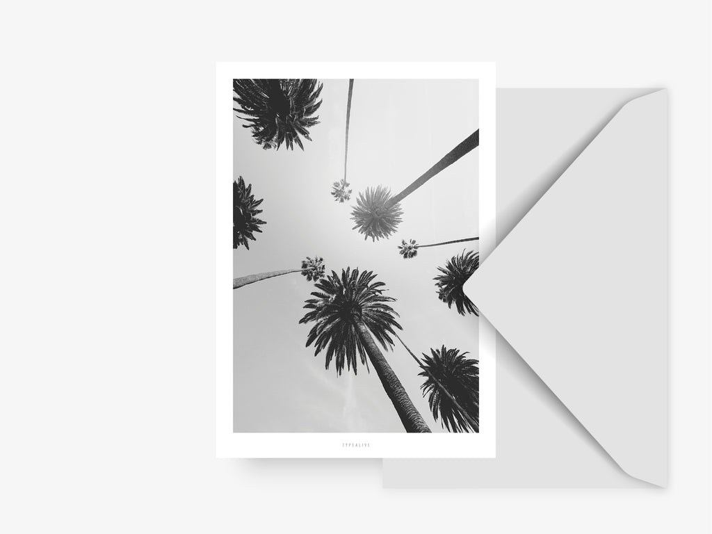 Postkarte / All About Palms No. 7