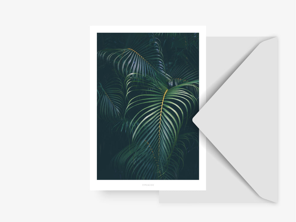 Postkarte / Junglelow No. 6