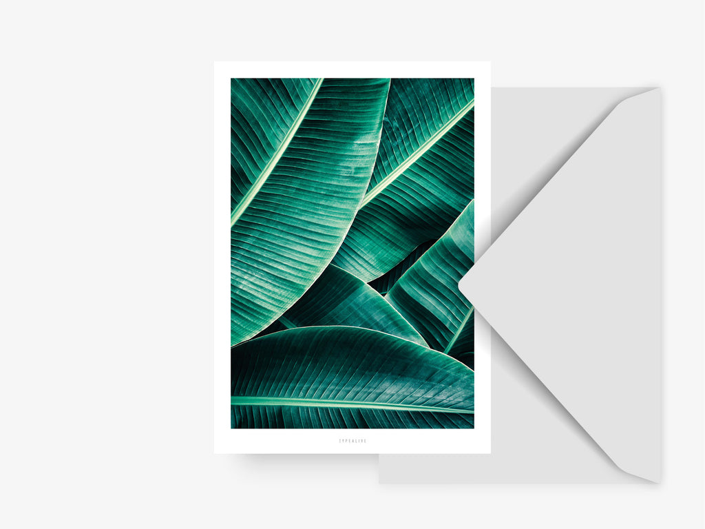 Postkarte / Junglelow No. 7