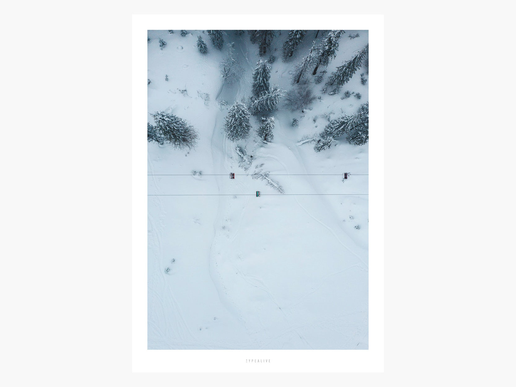 Print / Above The Woods No. 5