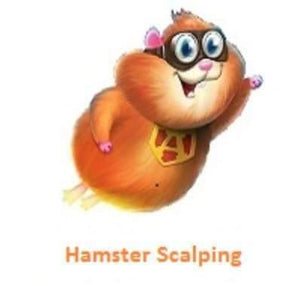 Hamster Scalping EA from MQL5 Market