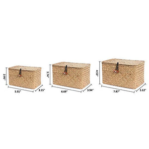 HandWoven Seagrass Baskets with Lid Set of 3