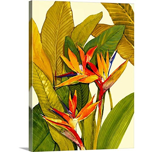 Bird of Paradise Canvas Print 30 x 40