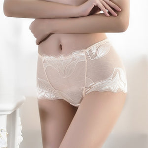 Mid-Waist Lace Briefs Ladies Translucent Mesh Panties