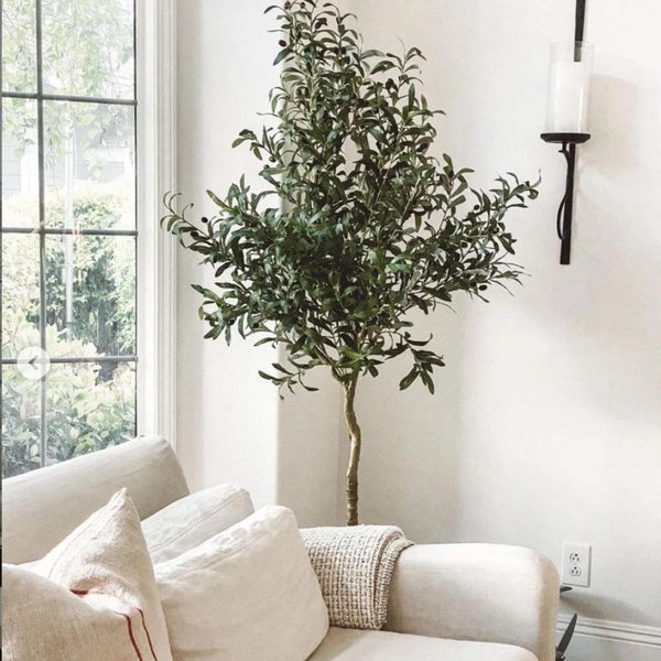 Why Faux Olive Tree Make the Best Seasonal Best Sell?