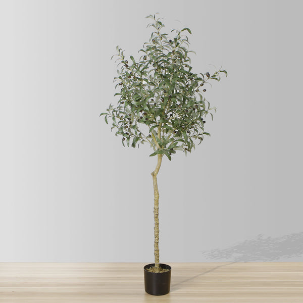Why Is a Faux Olive Tree the Best Choice for Spring?