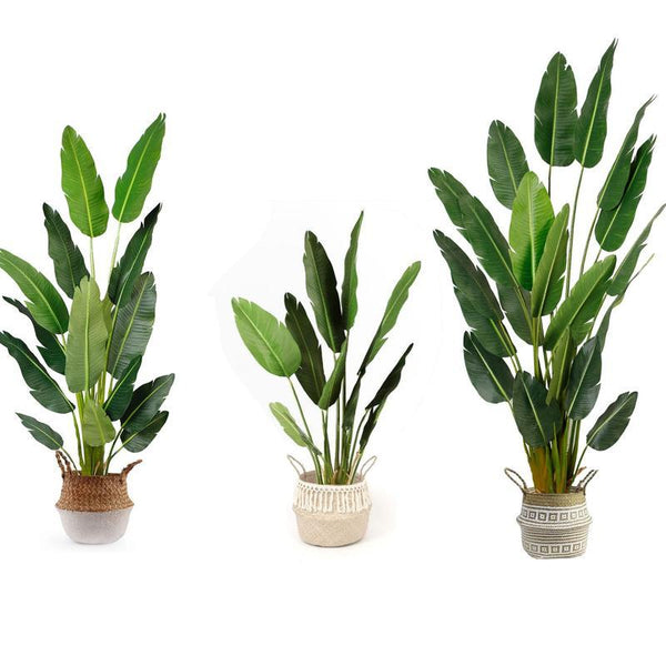 How to clean indoor fake plants ?
