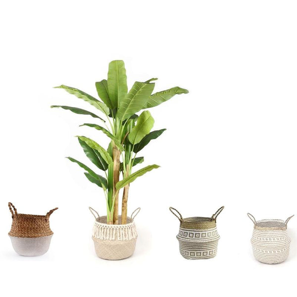 What Are Better Plastic Plants or Fabric Plants?