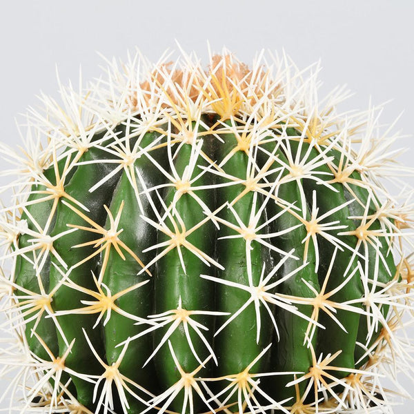 How to style with artificial cactus indoor? | Artiplanto