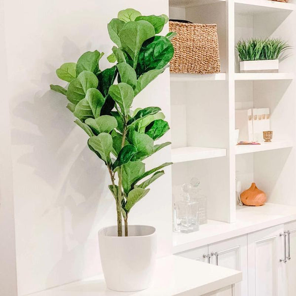 Top Three Reasons You Need Fake Plants in Your Office