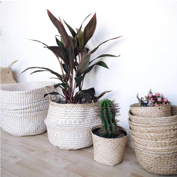 Why It's a Good Idea to Have Fake Plants at Your Bathroom
