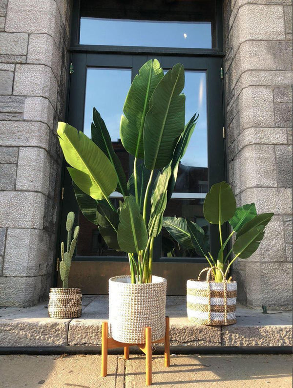 A new 2020 office decoration element with faux plants | Artiplanto