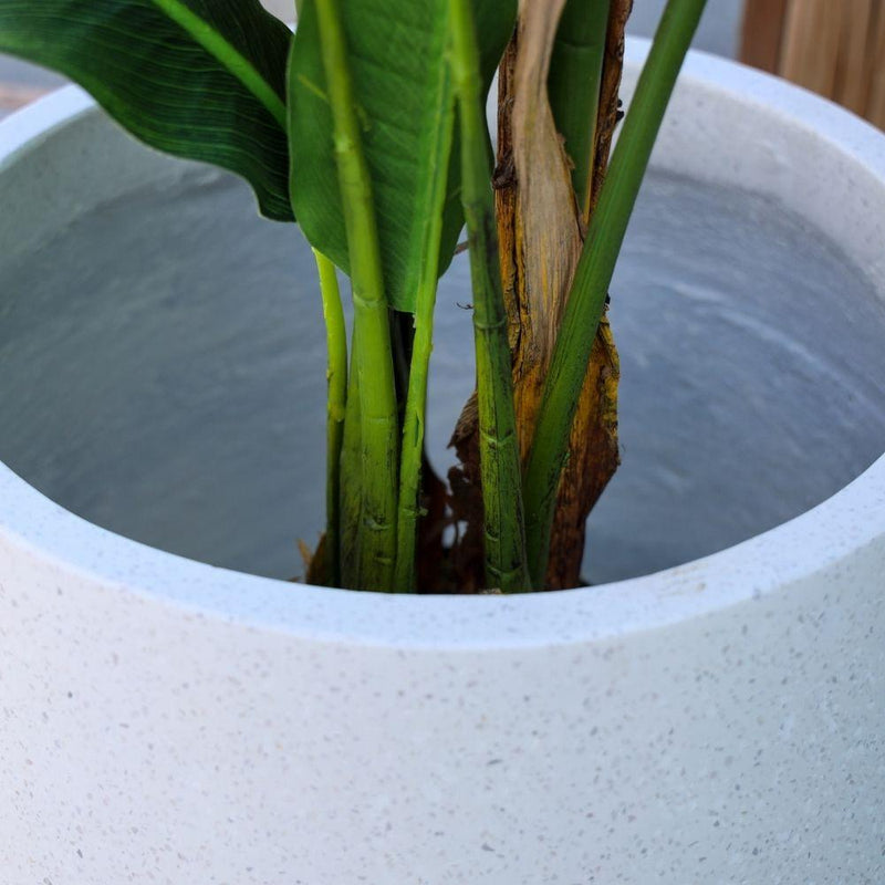 Coba Cement Planter (Multiple Sizes)