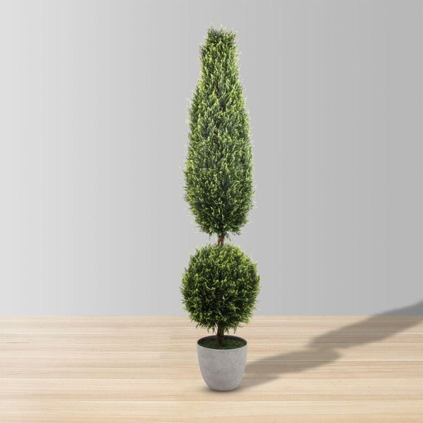 Jacob Potted Boxwood Topiary Plant (Multiple Sizes)