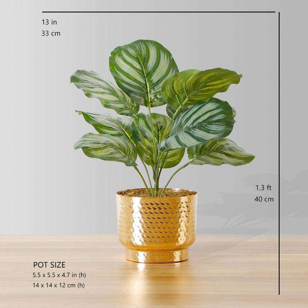 Calathea Faux Potted Plant