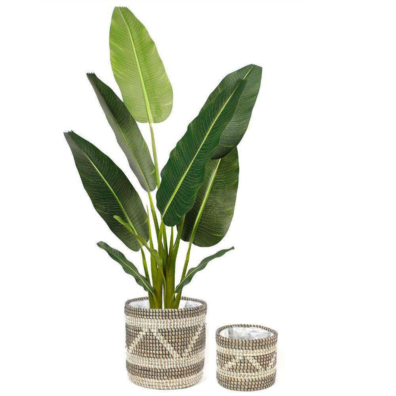 COBRA - Seagrass Planter Natural Planter ArtiPlanto