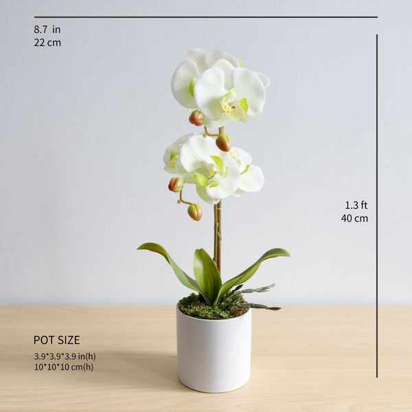 Poblado Artificial White Butterfly Orchid Potted Plant