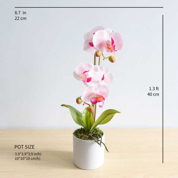 Guatape Artificial Pink Butterfly Orchid Potted Plant