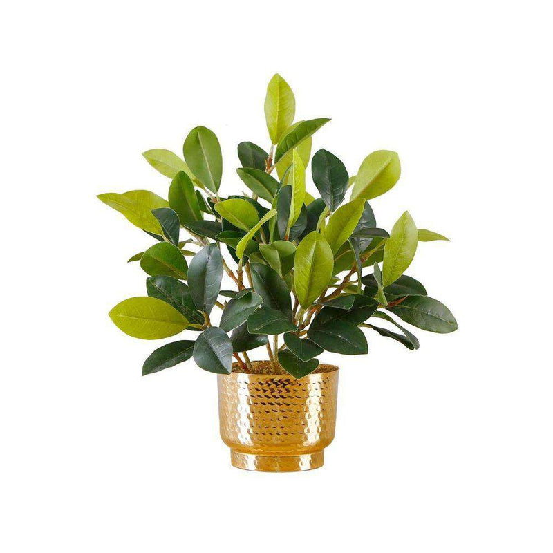 MORENO POTTED FAUX WATERCRESS PLANT Tabletop Plant ArtiPlanto