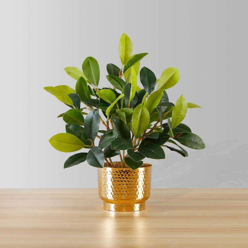 MORENO POTTED FAUX WATERCRESS PLANT