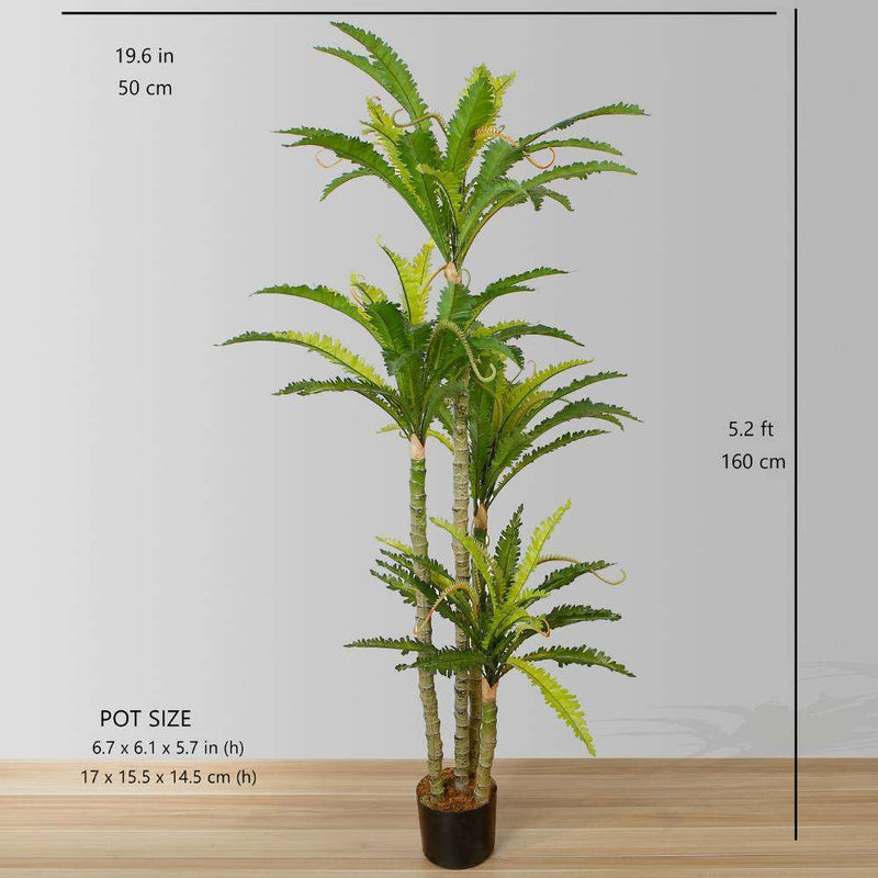 ALBA ARTIFICIAL BIRD NEST FERN POTTED PLANT 5.2' ArtiPlanto