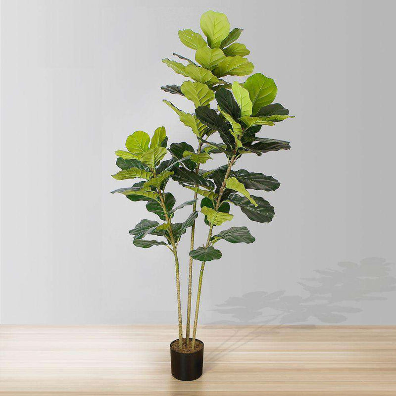ALVA Artificial Fiddle Leaf Potted Plant (Multiple Sizes) ArtiPlanto