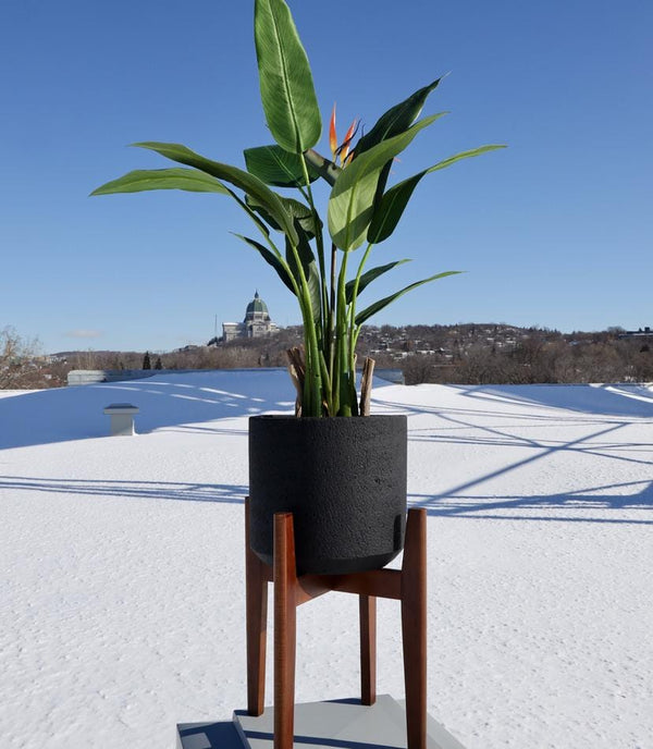 NERI BLACK MID- CENTURY CEMENT PLANTER WITH WOODEN STAND
