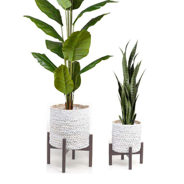 BIBA - White Mid-Century Braided Planter On Wooden Stand ArtiPlanto