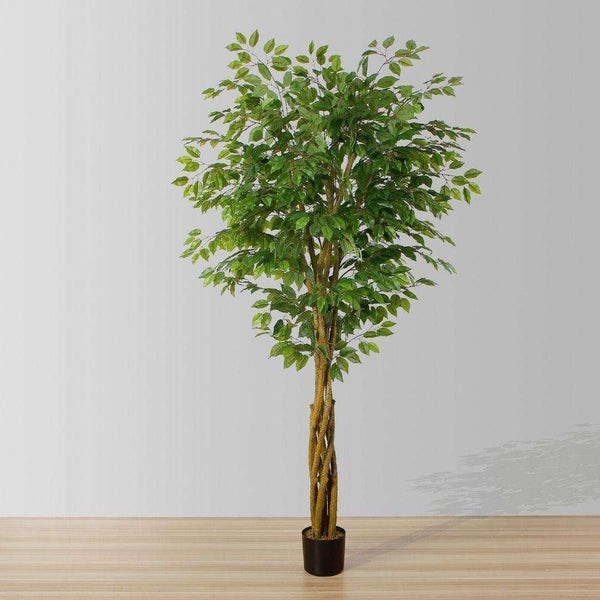 Bea Artificial Ficus Potted Plant 6.5 ArtiPlanto