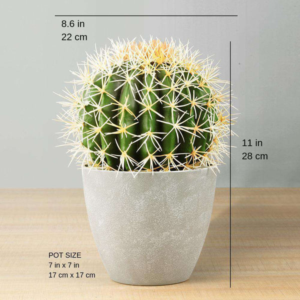 "COCO Artificial Cactus Potted Plant 11"" ArtiPlanto"